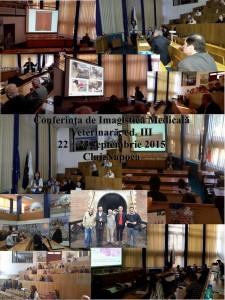 Colaj Simp Cluj 2015 resized